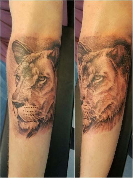 I just finished this lioness. it was well fun but bare hard to get a photo, so forgive my photography skills. but ye, check it out-robb: Swipe To View More Images